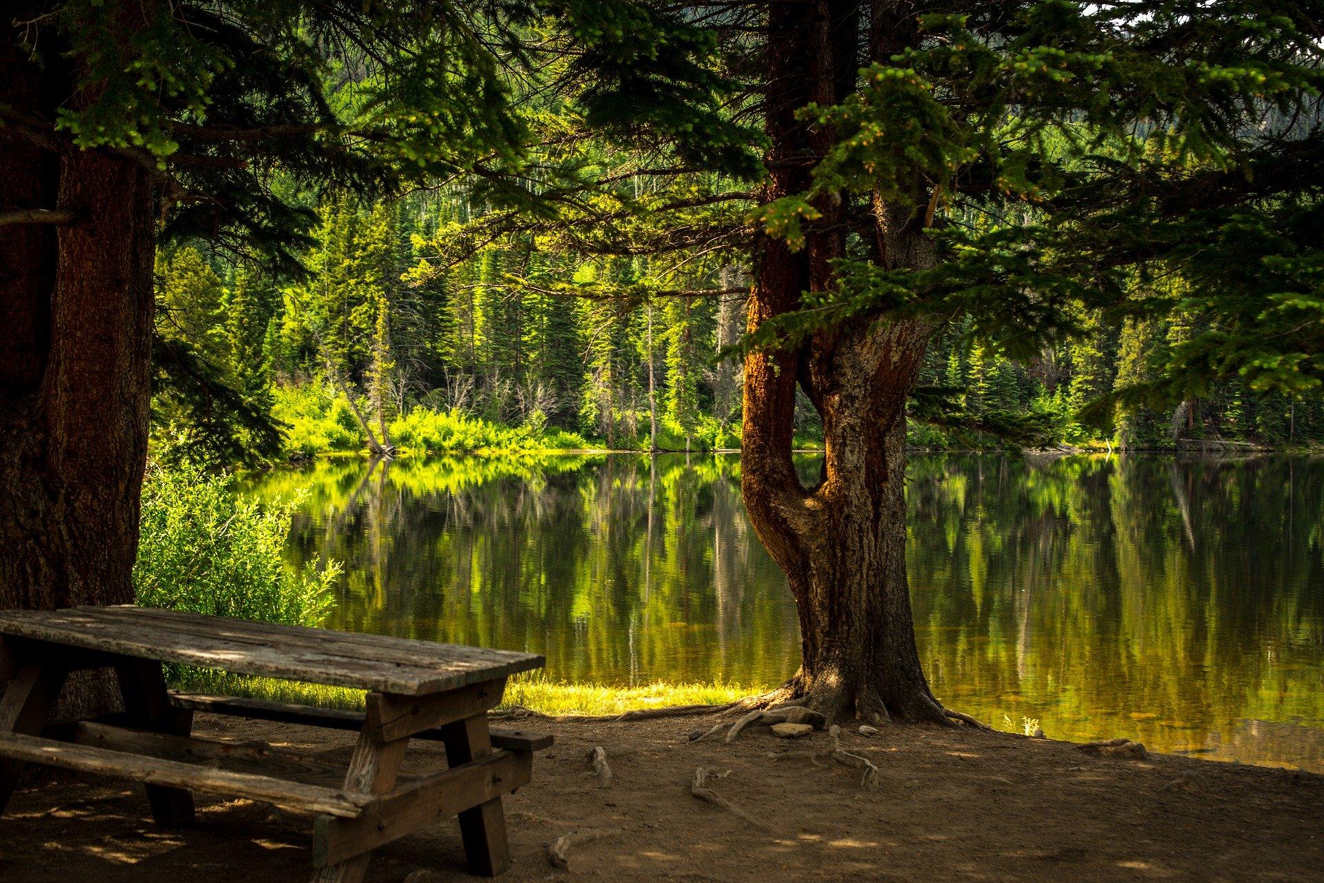 krásný park