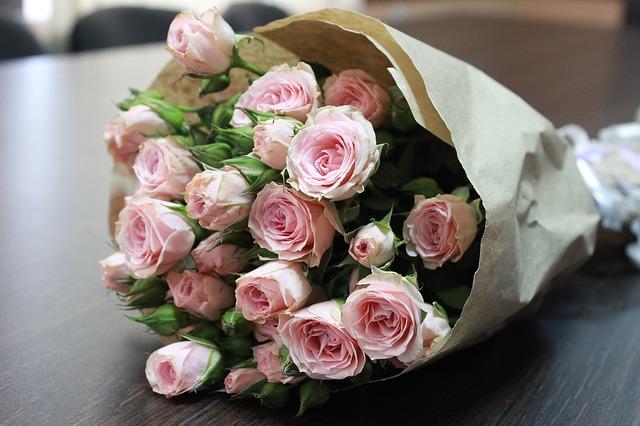 květina růží